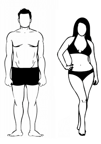 Nutrition Calculator - Endomorph Body Type