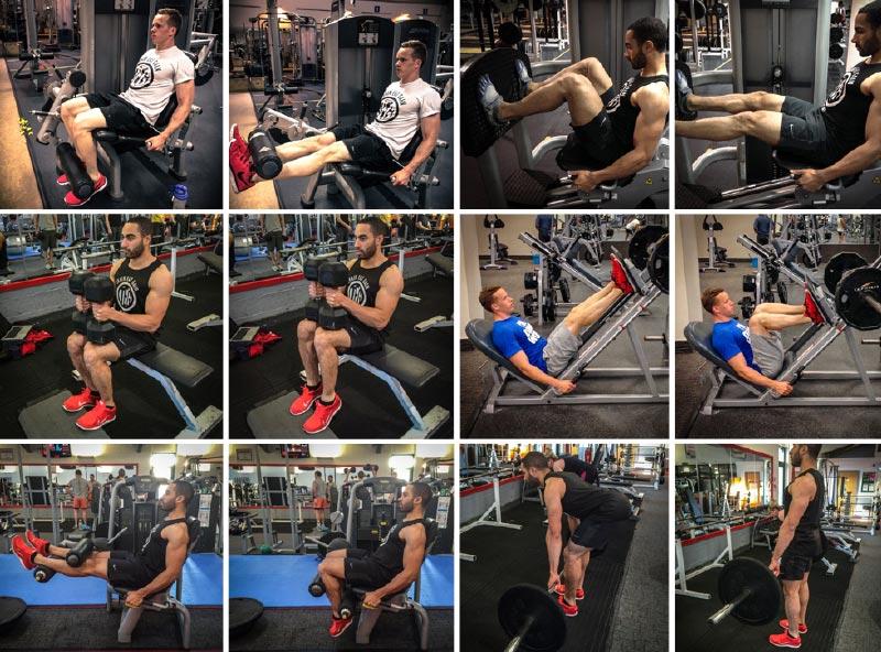 High Volume Leg Workout
