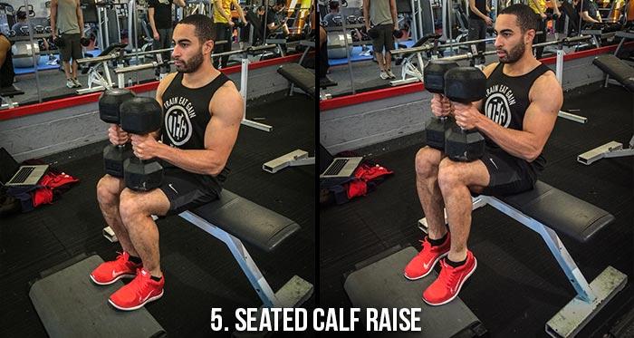 High Volume Leg Workout - Seated Calf Raise