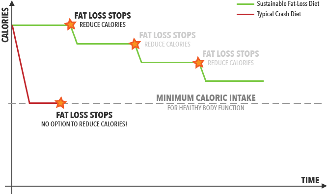 Sustainable Fat Loss vs Crash Diet