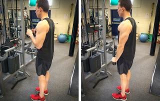 Triceps Rope Pulldown