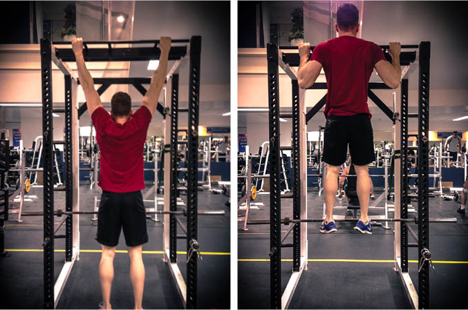 Pull Up Exercise Guide